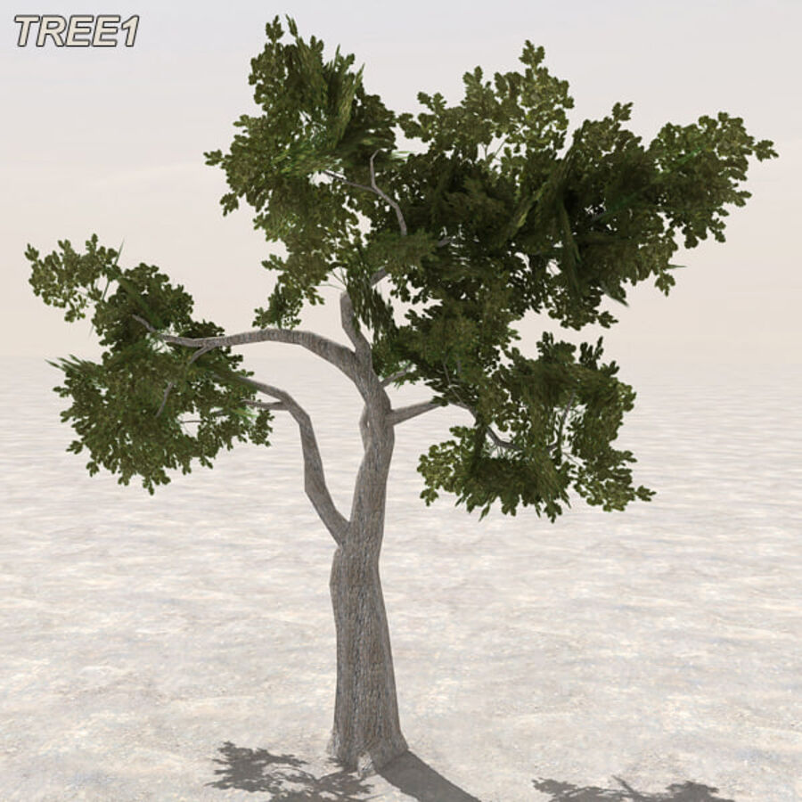 Tree Plant Pack royalty-free 3d model - Preview no. 12