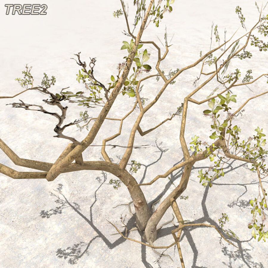 Tree Plant Pack royalty-free 3d model - Preview no. 22