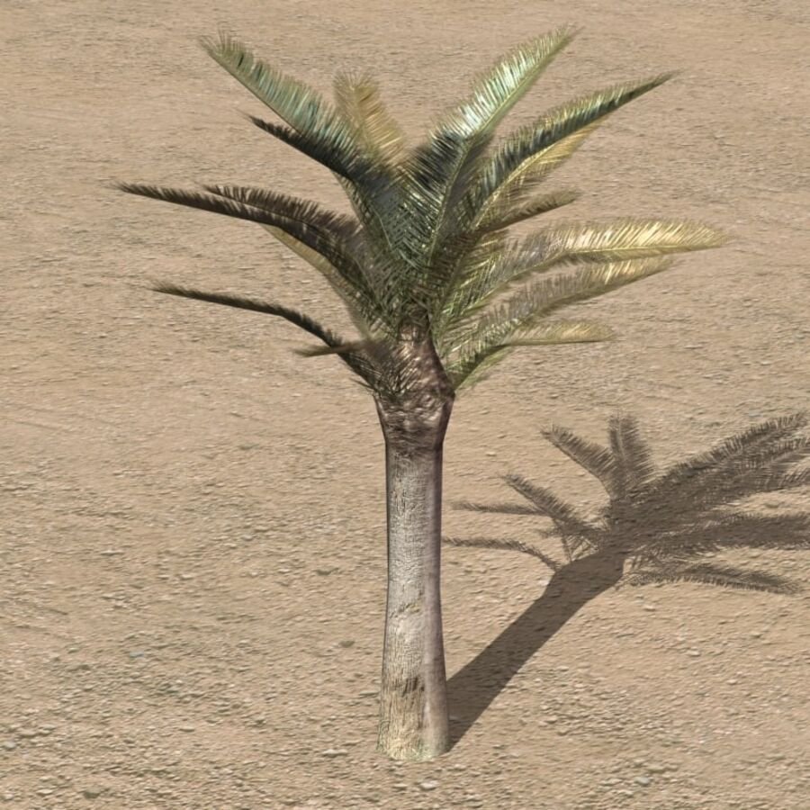 Tree Plant Pack royalty-free 3d model - Preview no. 33