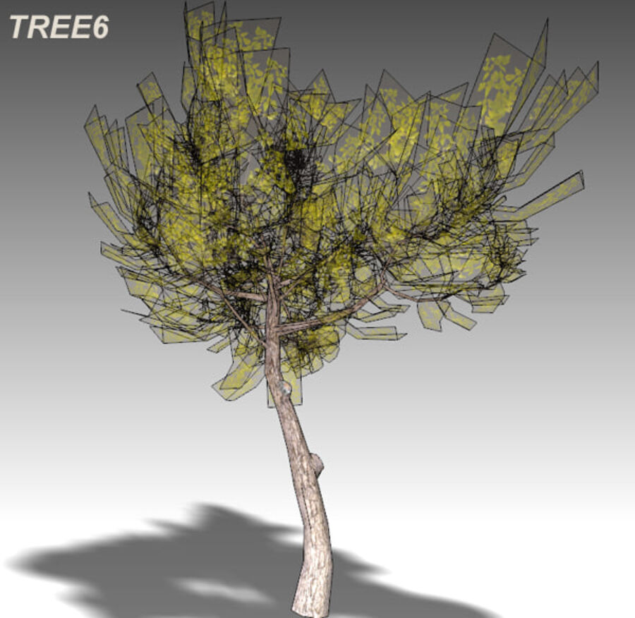 Tree Plant Pack royalty-free 3d model - Preview no. 90