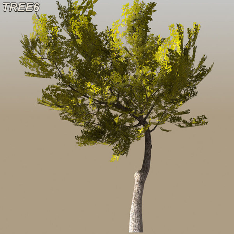 Tree Plant Pack royalty-free 3d model - Preview no. 87