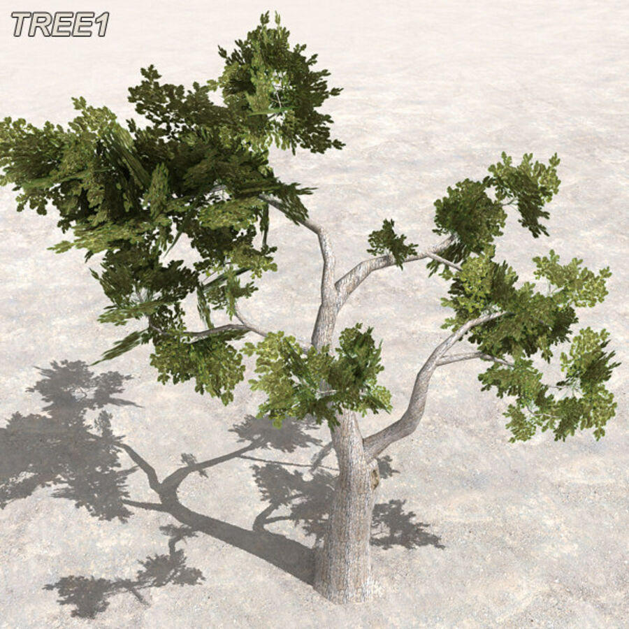 Tree Plant Pack royalty-free 3d model - Preview no. 8