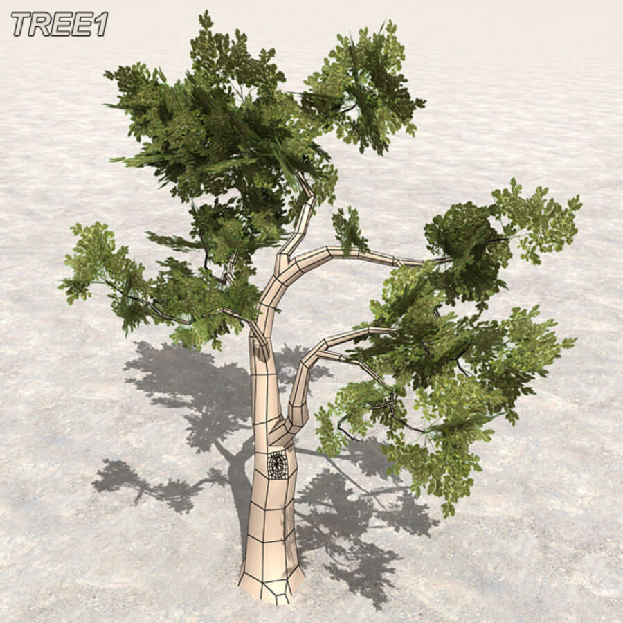 Tree Plant Pack royalty-free 3d model - Preview no. 10