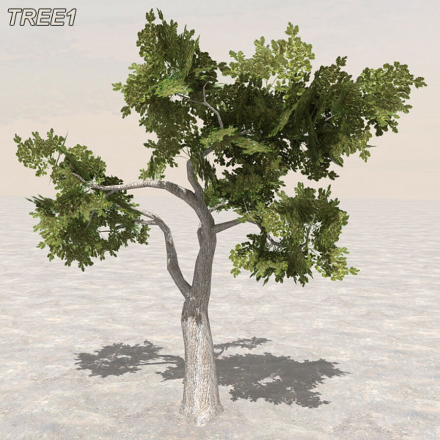 Tree Plant Pack royalty-free 3d model - Preview no. 13