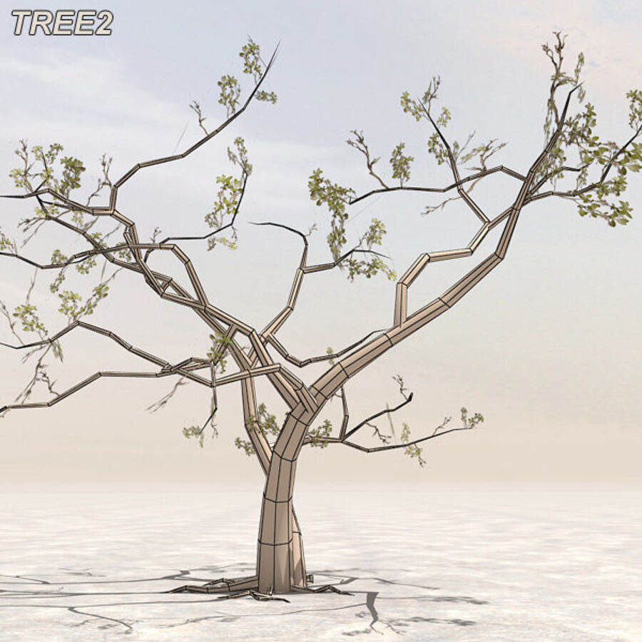 Tree Plant Pack royalty-free 3d model - Preview no. 20