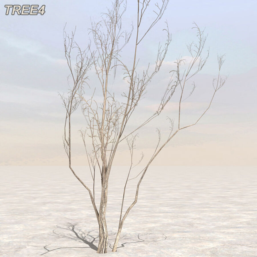 Tree Plant Pack royalty-free 3d model - Preview no. 47