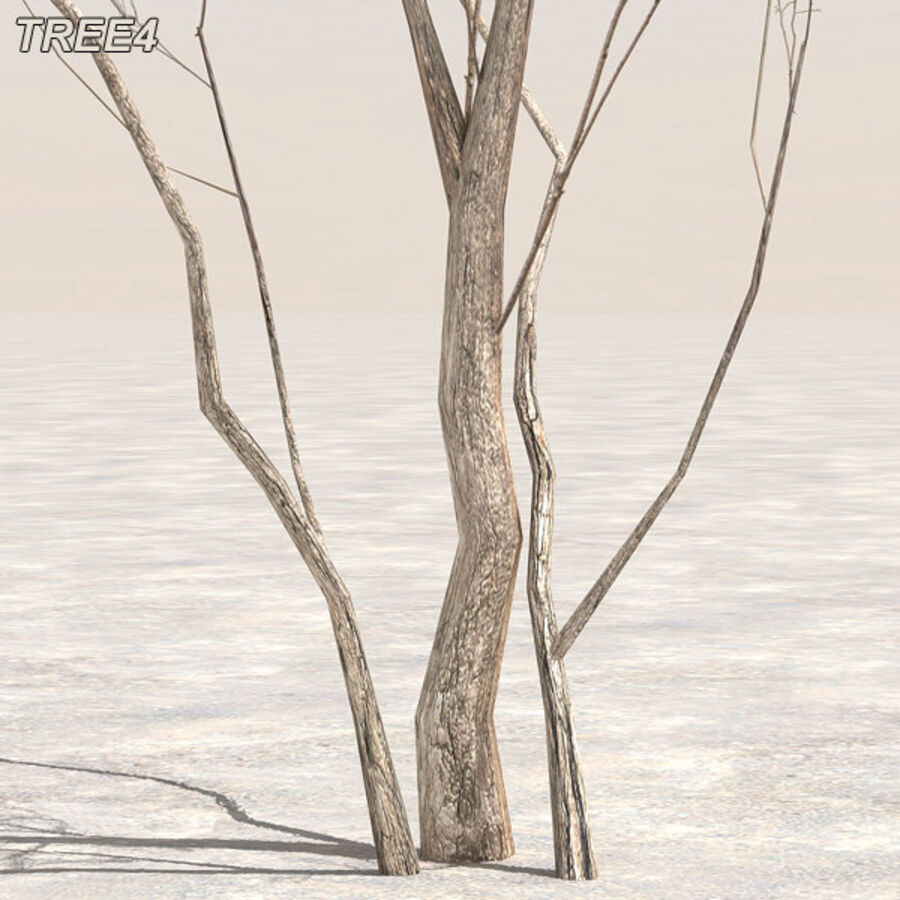 Tree Plant Pack royalty-free 3d model - Preview no. 52