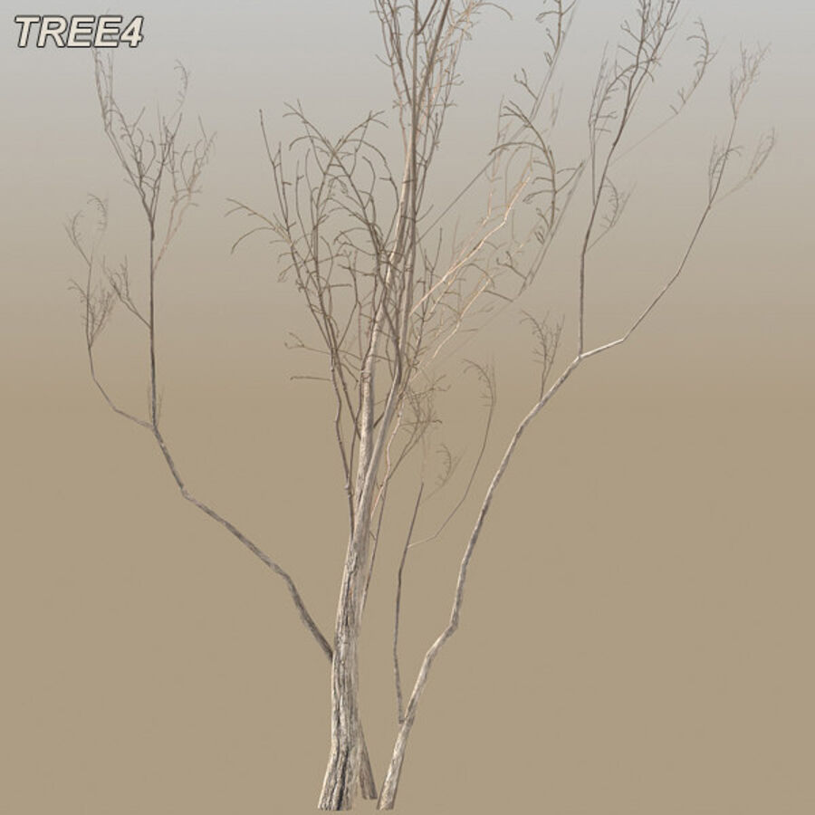 Tree Plant Pack royalty-free 3d model - Preview no. 58