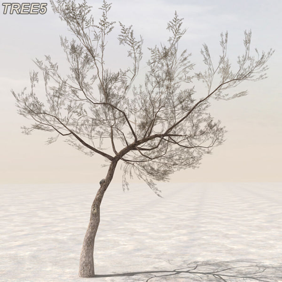 Tree Plant Pack royalty-free 3d model - Preview no. 63