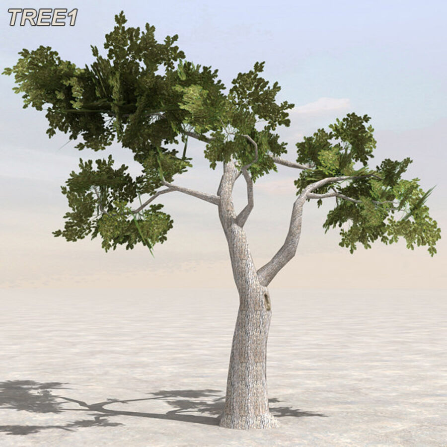 Tree Plant Pack royalty-free 3d model - Preview no. 7
