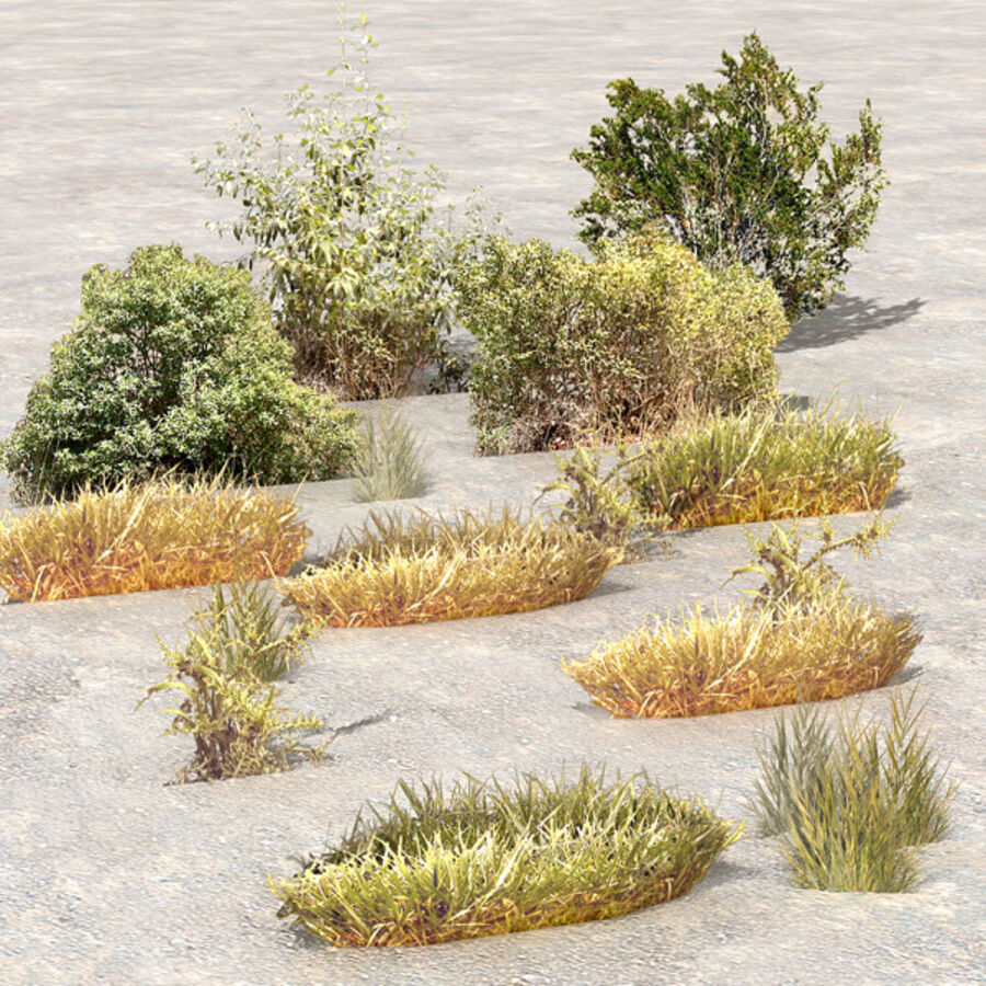 Tree Plant Pack royalty-free 3d model - Preview no. 102