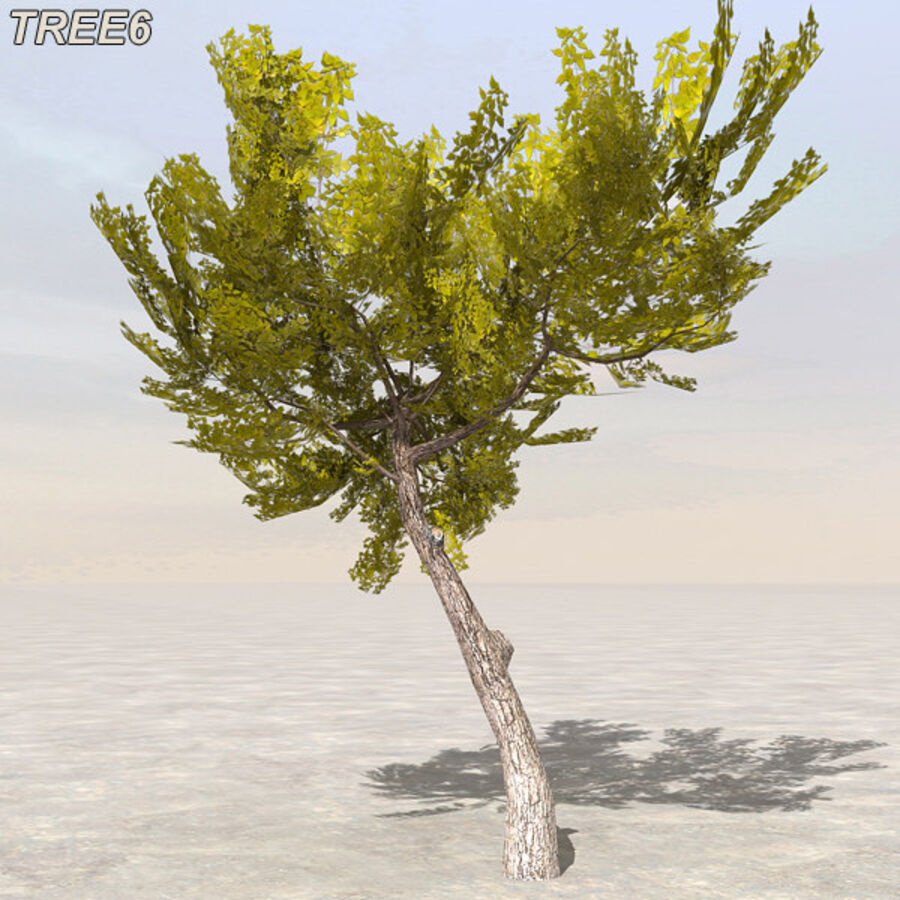 Tree Plant Pack royalty-free 3d model - Preview no. 76