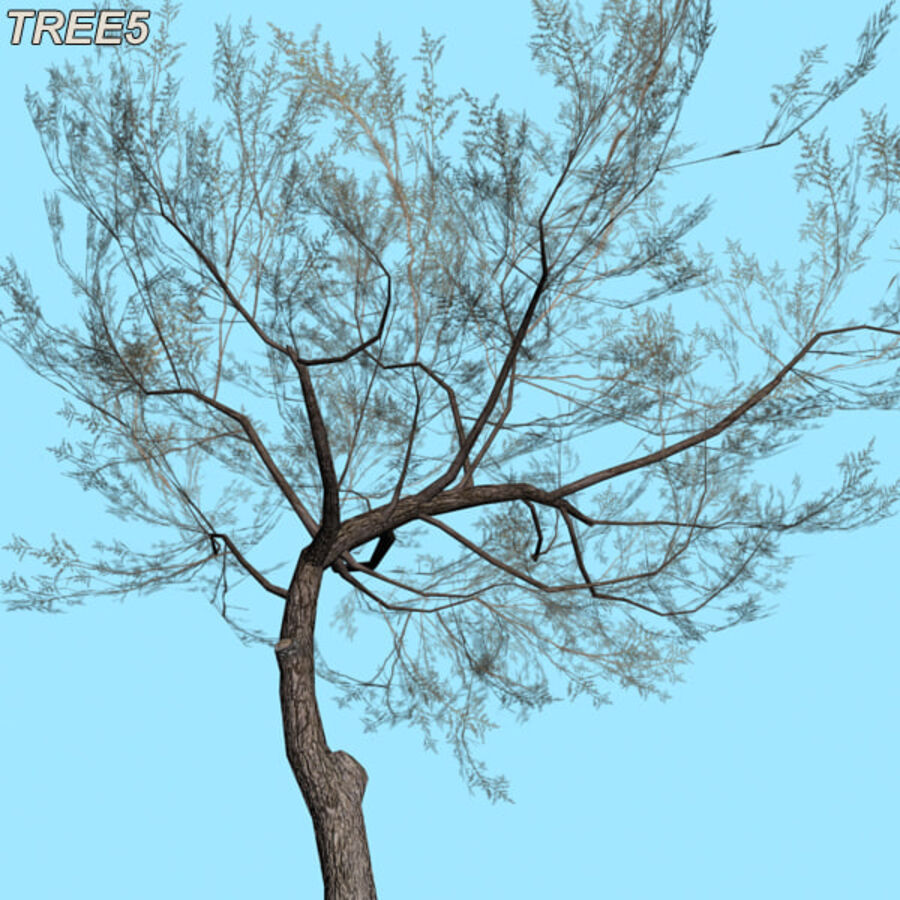 Tree Plant Pack royalty-free 3d model - Preview no. 74