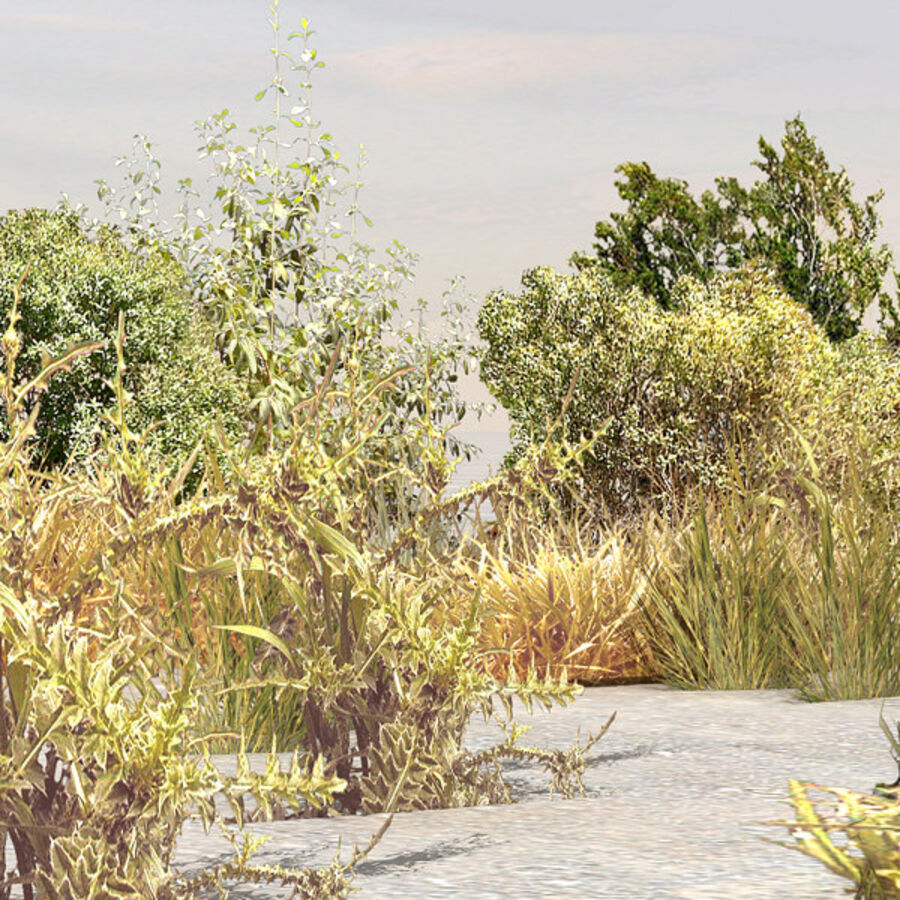 Tree Plant Pack royalty-free 3d model - Preview no. 106