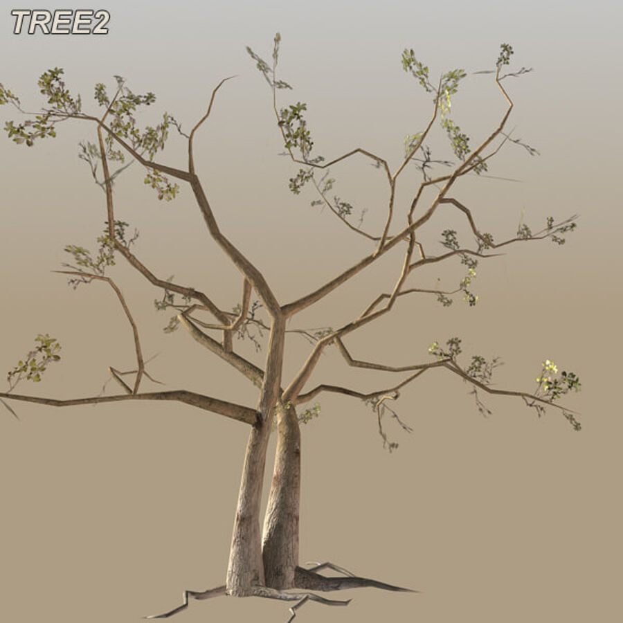 Tree Plant Pack royalty-free 3d model - Preview no. 27