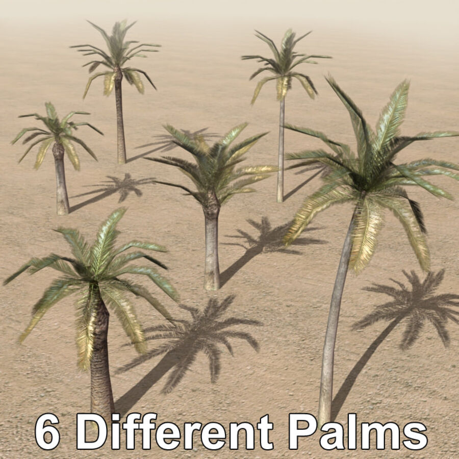 Tree Plant Pack royalty-free 3d model - Preview no. 6
