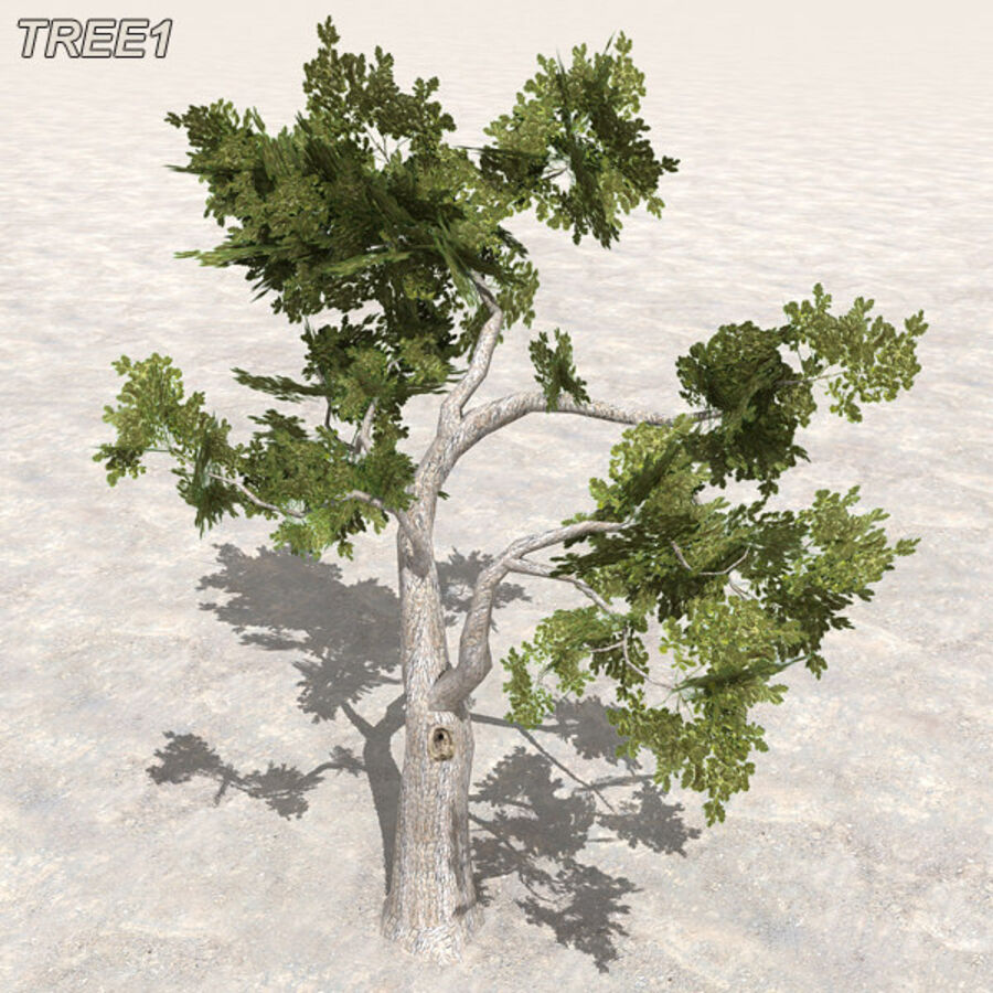 Tree Plant Pack royalty-free 3d model - Preview no. 9