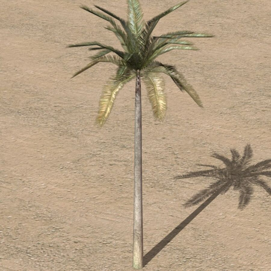 Tree Plant Pack royalty-free 3d model - Preview no. 36