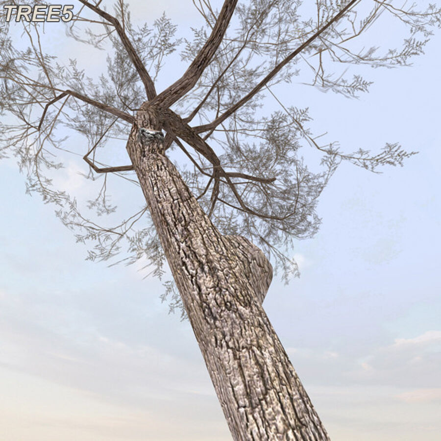 Tree Plant Pack royalty-free 3d model - Preview no. 71