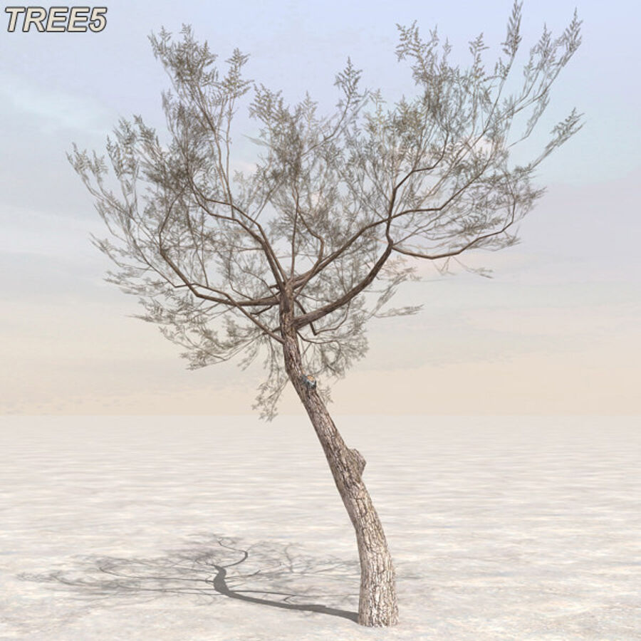 Tree Plant Pack royalty-free 3d model - Preview no. 61