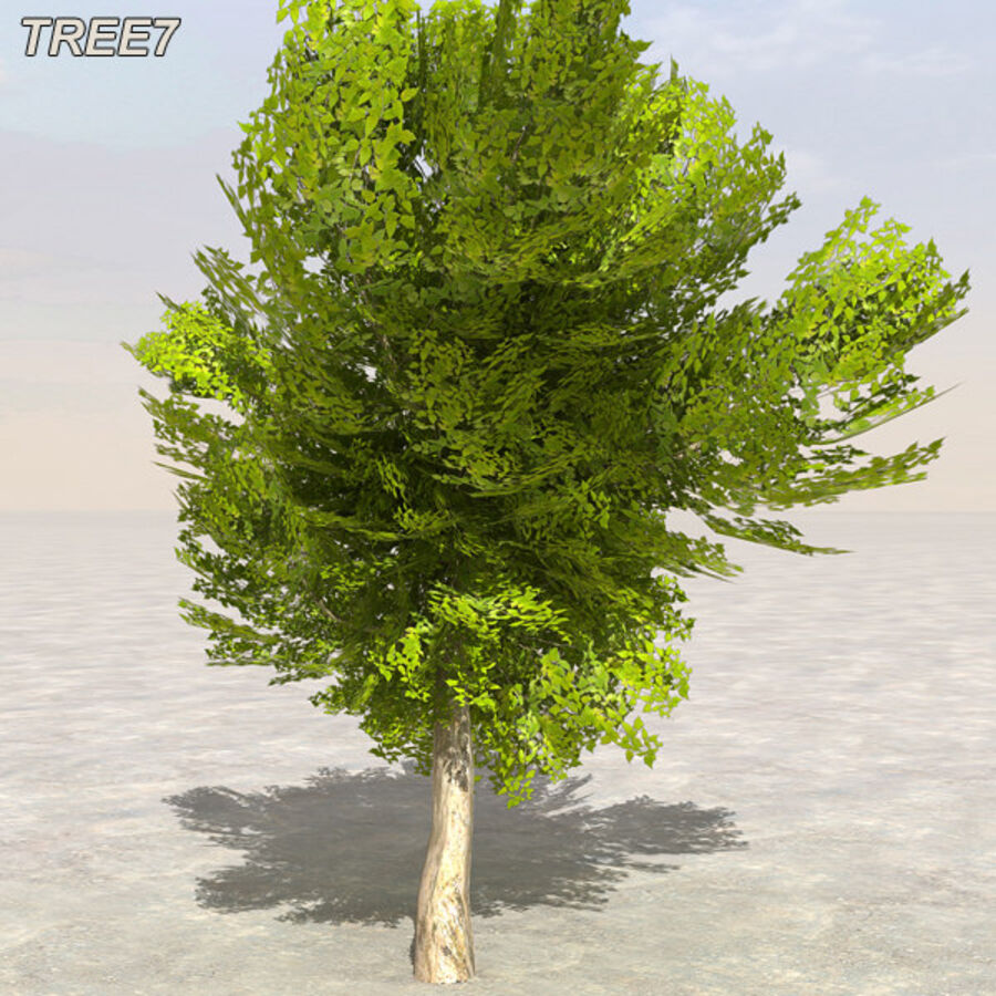 Tree Plant Pack royalty-free 3d model - Preview no. 94
