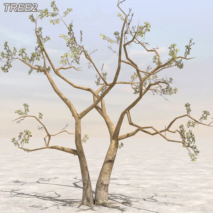 Tree Plant Pack royalty-free 3d model - Preview no. 17