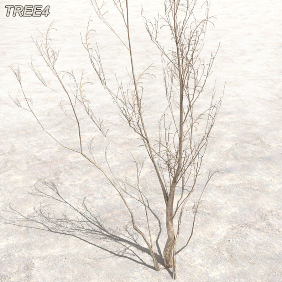 Tree Plant Pack royalty-free 3d model - Preview no. 49