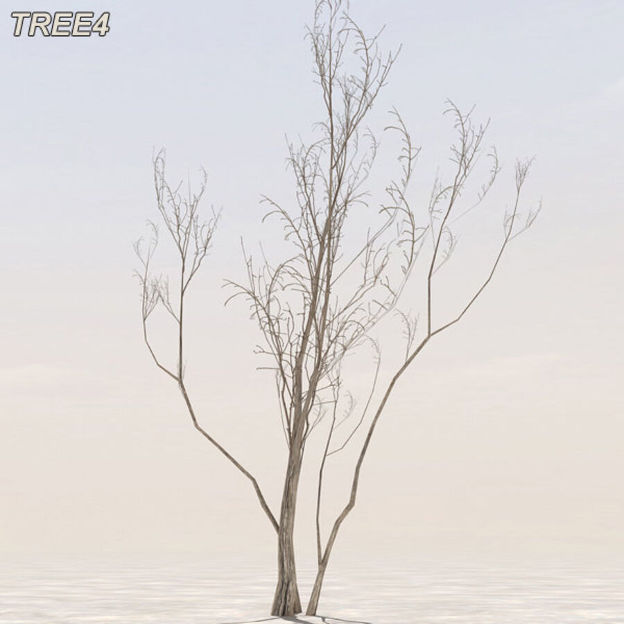 Tree Plant Pack royalty-free 3d model - Preview no. 51