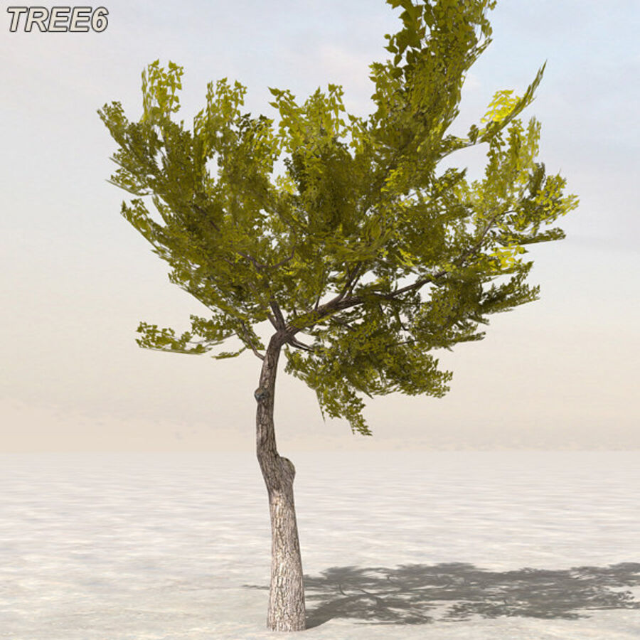 Tree Plant Pack royalty-free 3d model - Preview no. 77