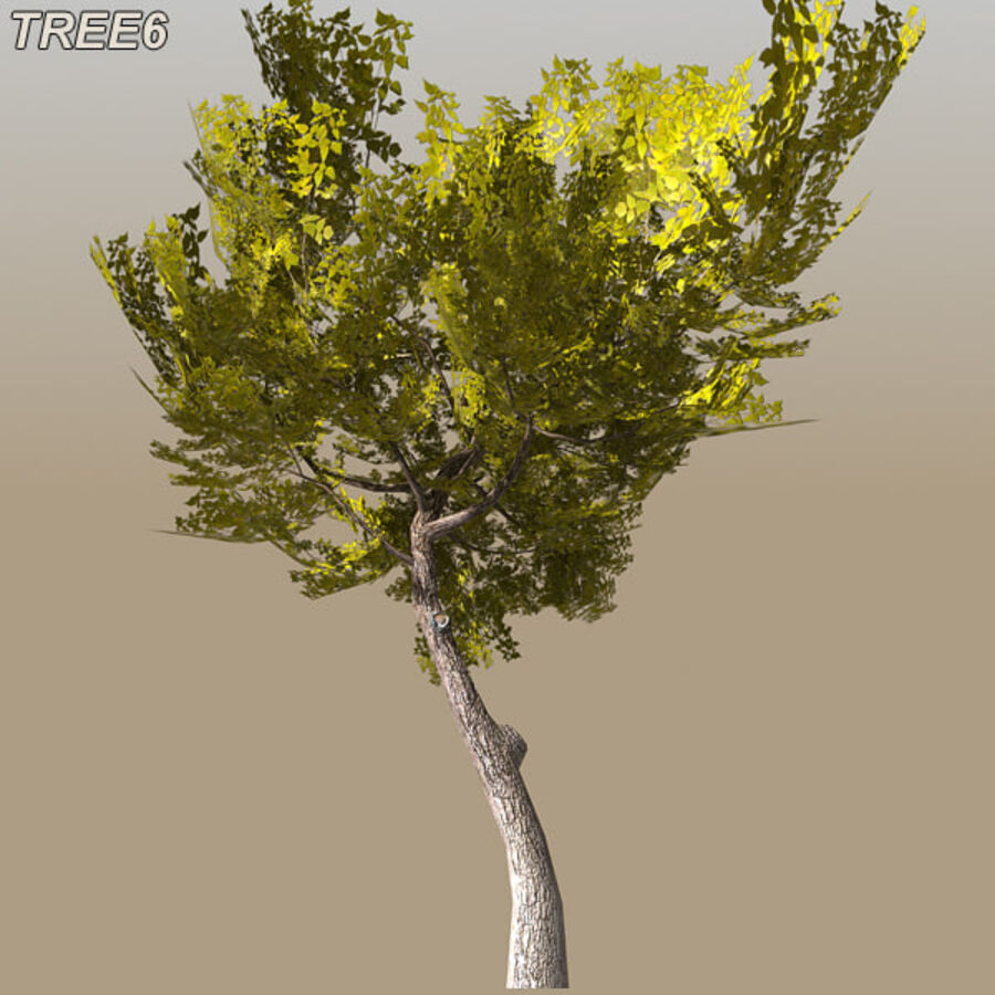 Tree Plant Pack royalty-free 3d model - Preview no. 86