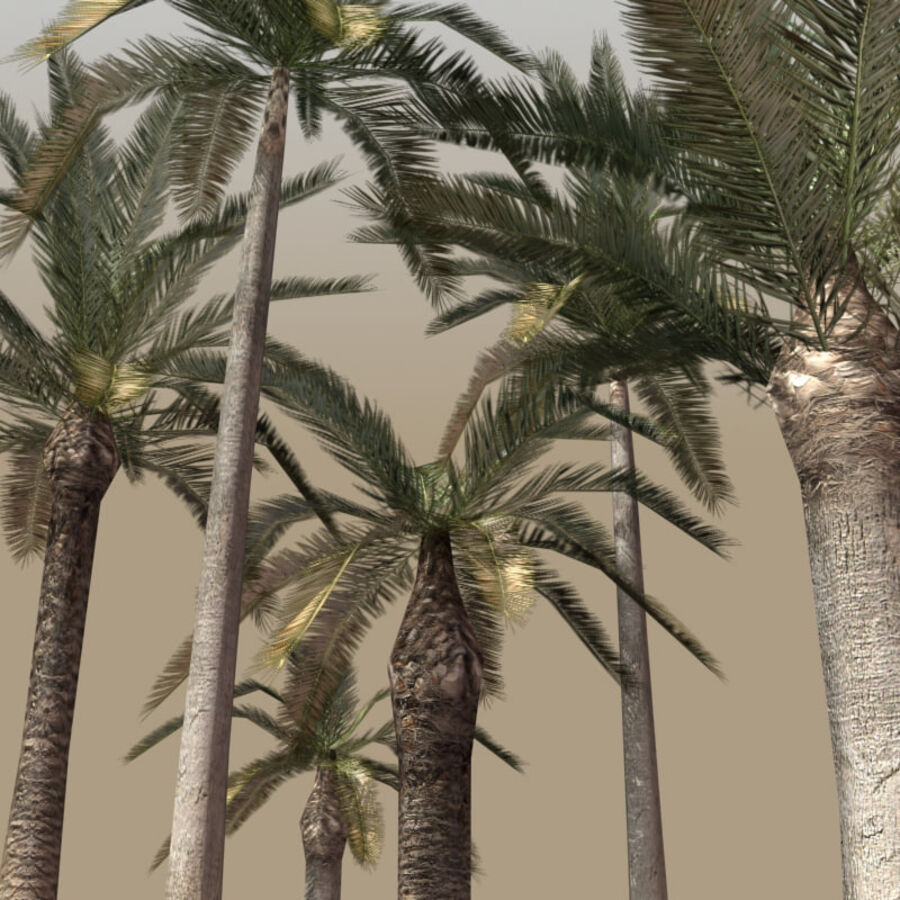 Tree Plant Pack royalty-free 3d model - Preview no. 30