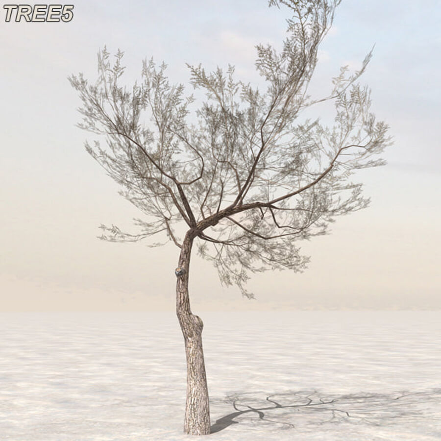 Tree Plant Pack royalty-free 3d model - Preview no. 62