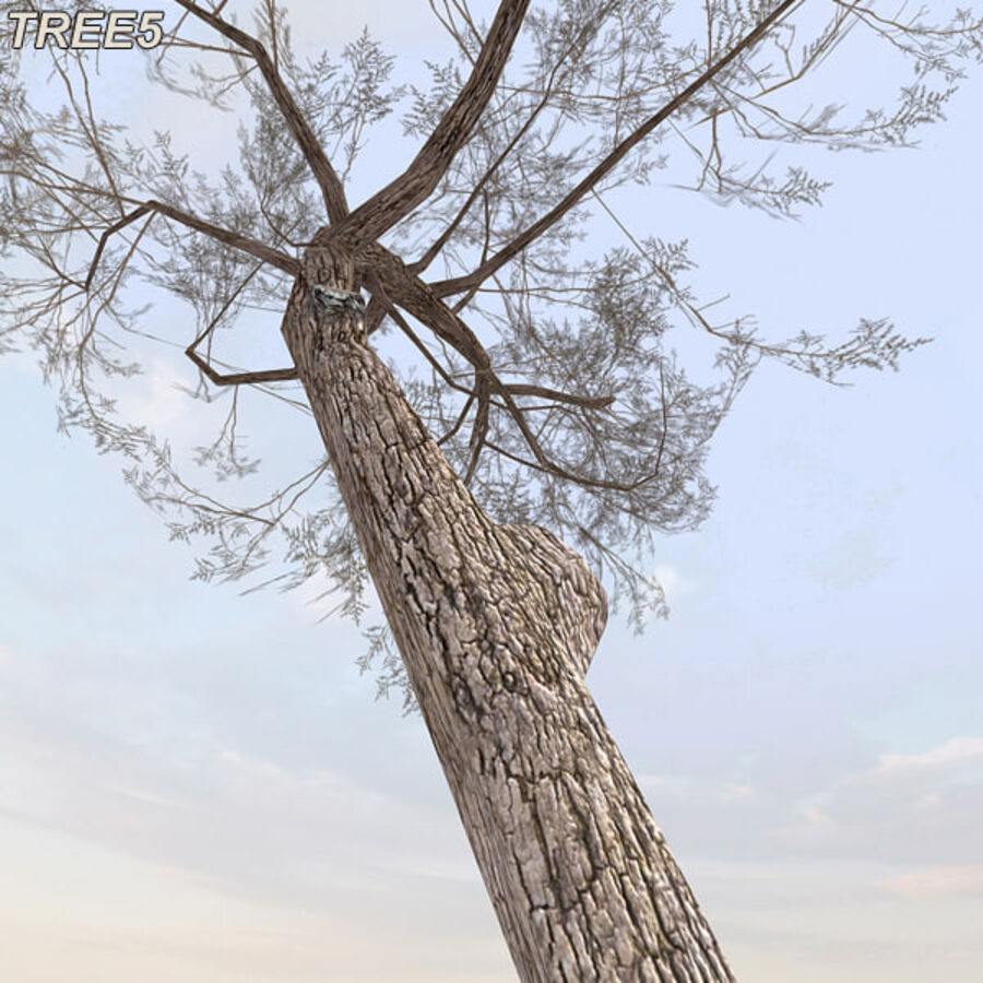 Tree Plant Pack royalty-free 3d model - Preview no. 69