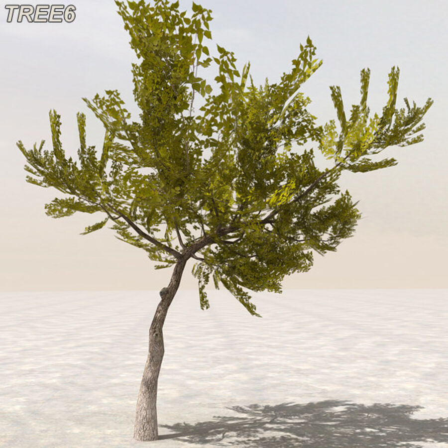 Tree Plant Pack royalty-free 3d model - Preview no. 78