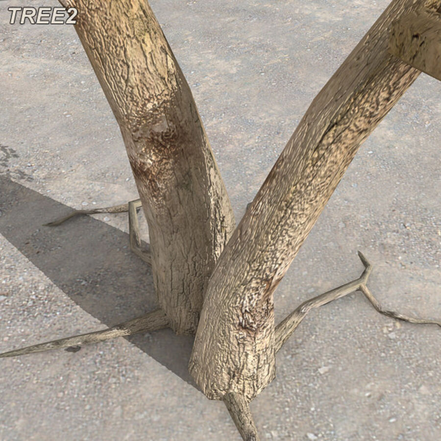 Tree Plant Pack royalty-free 3d model - Preview no. 24