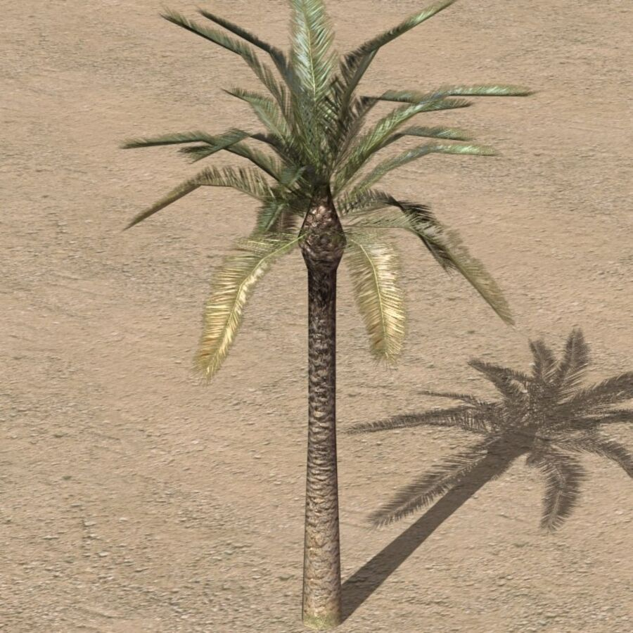 Tree Plant Pack royalty-free 3d model - Preview no. 35