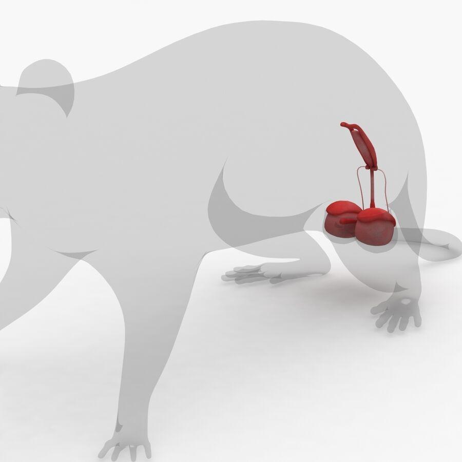 Текстурированная анатомия самцов и самок крыс royalty-free 3d model - Preview no. 13
