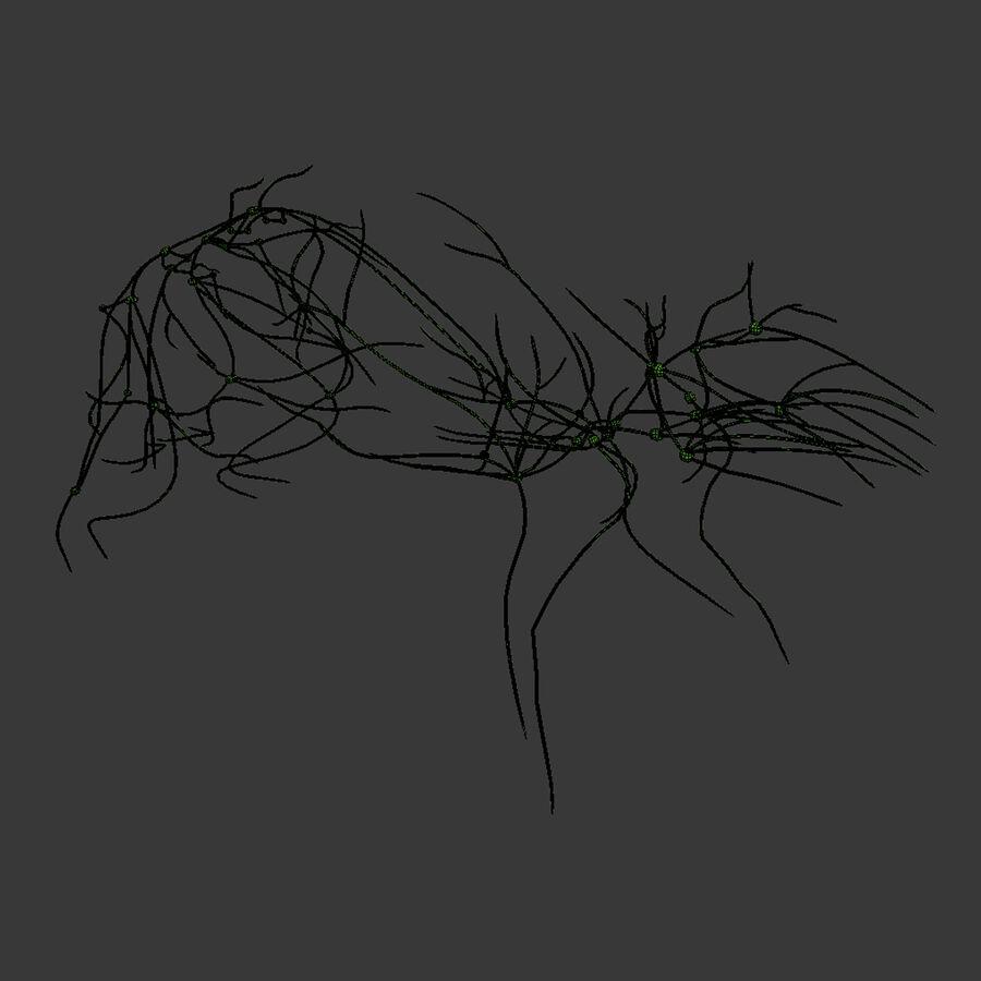 Текстурированная анатомия самцов и самок крыс royalty-free 3d model - Preview no. 28