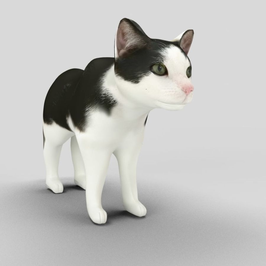 Cat royalty-free 3d model - Preview no. 8