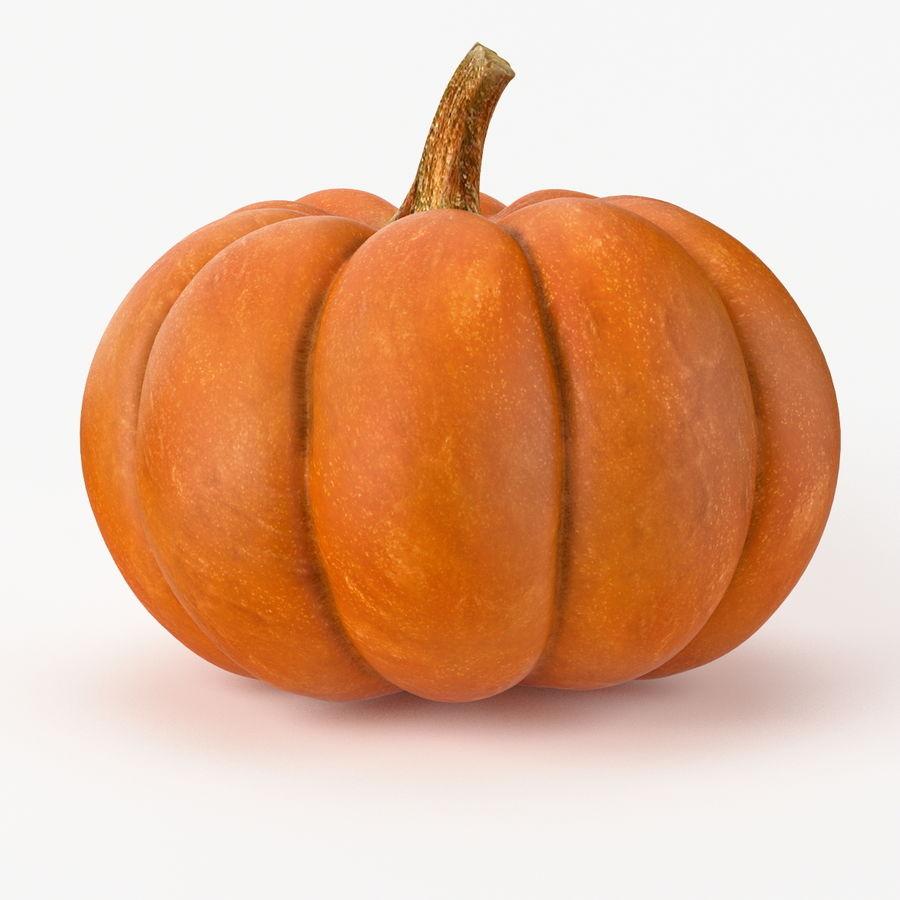 Realistic Pumpkin royalty-free 3d model - Preview no. 3