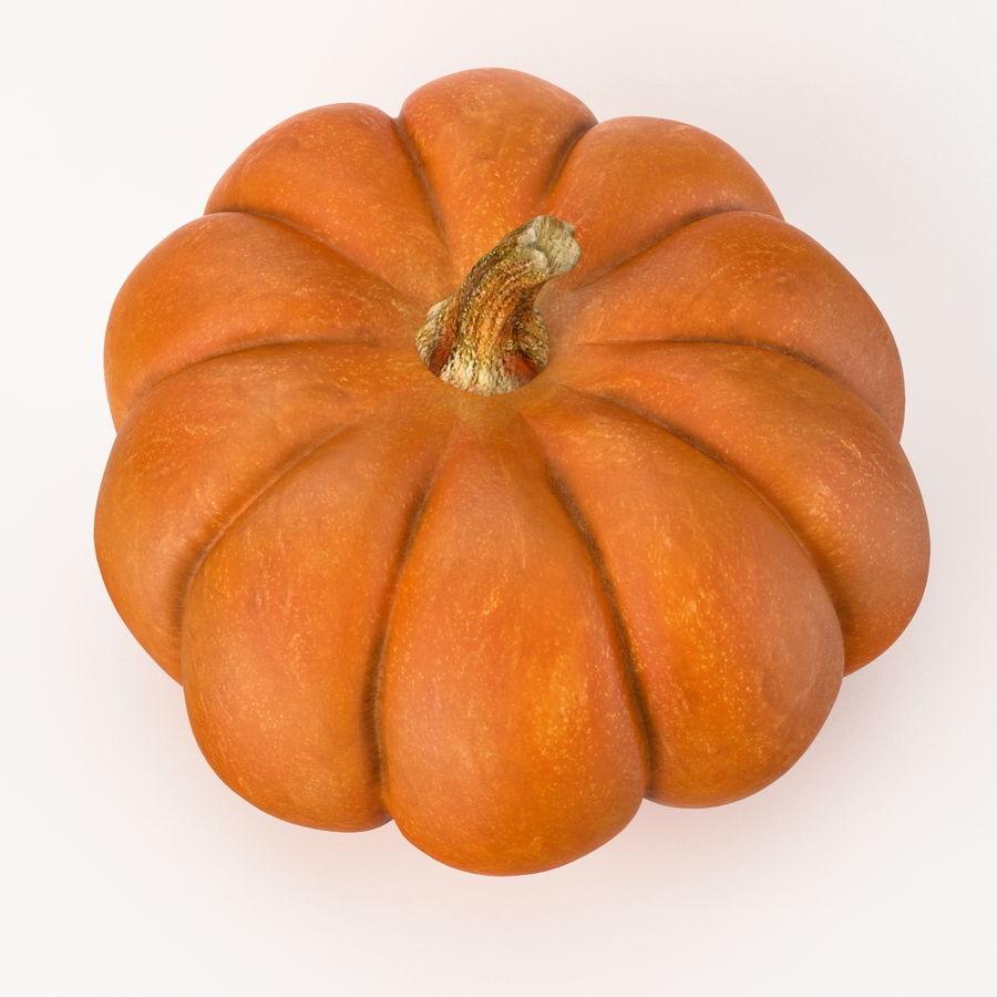 Realistic Pumpkin royalty-free 3d model - Preview no. 4