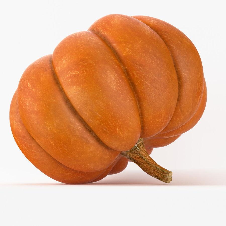 Realistic Pumpkin royalty-free 3d model - Preview no. 6