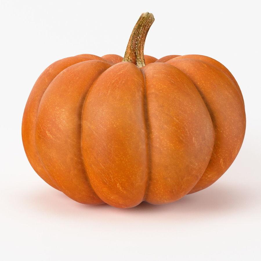Realistic Pumpkin royalty-free 3d model - Preview no. 2