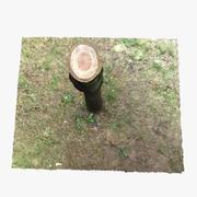 Toco de árvore 2 3d model