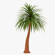 Palm 06 3d model