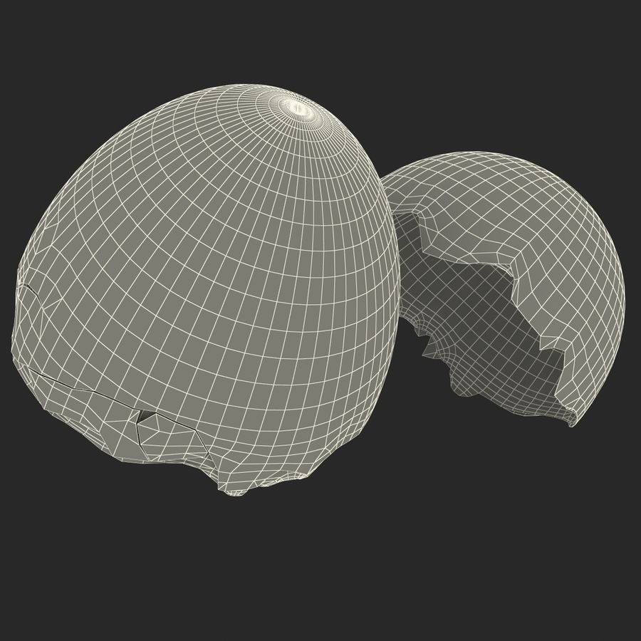 Coquille d'oeuf royalty-free 3d model - Preview no. 25