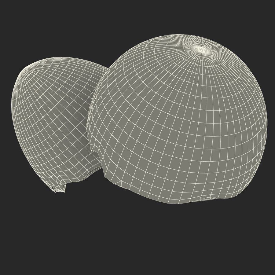 Coquille d'oeuf royalty-free 3d model - Preview no. 26