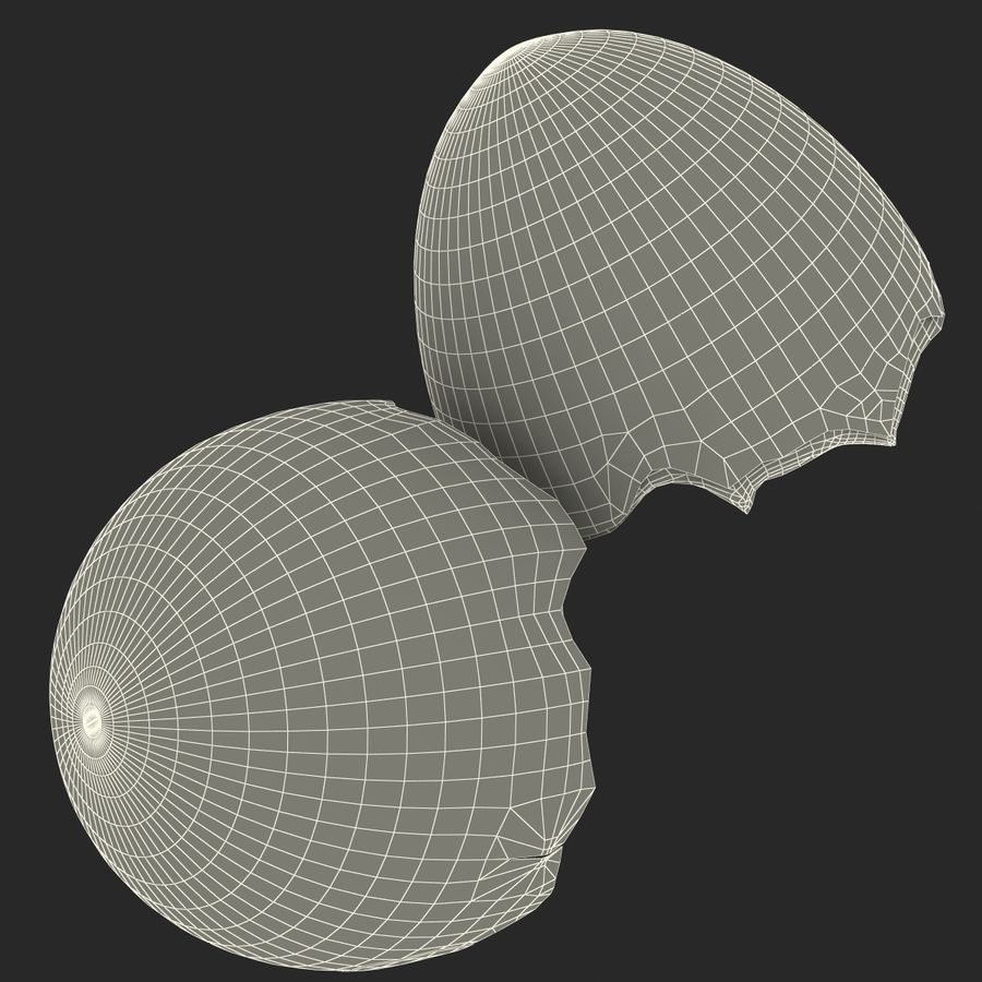 Coquille d'oeuf royalty-free 3d model - Preview no. 21