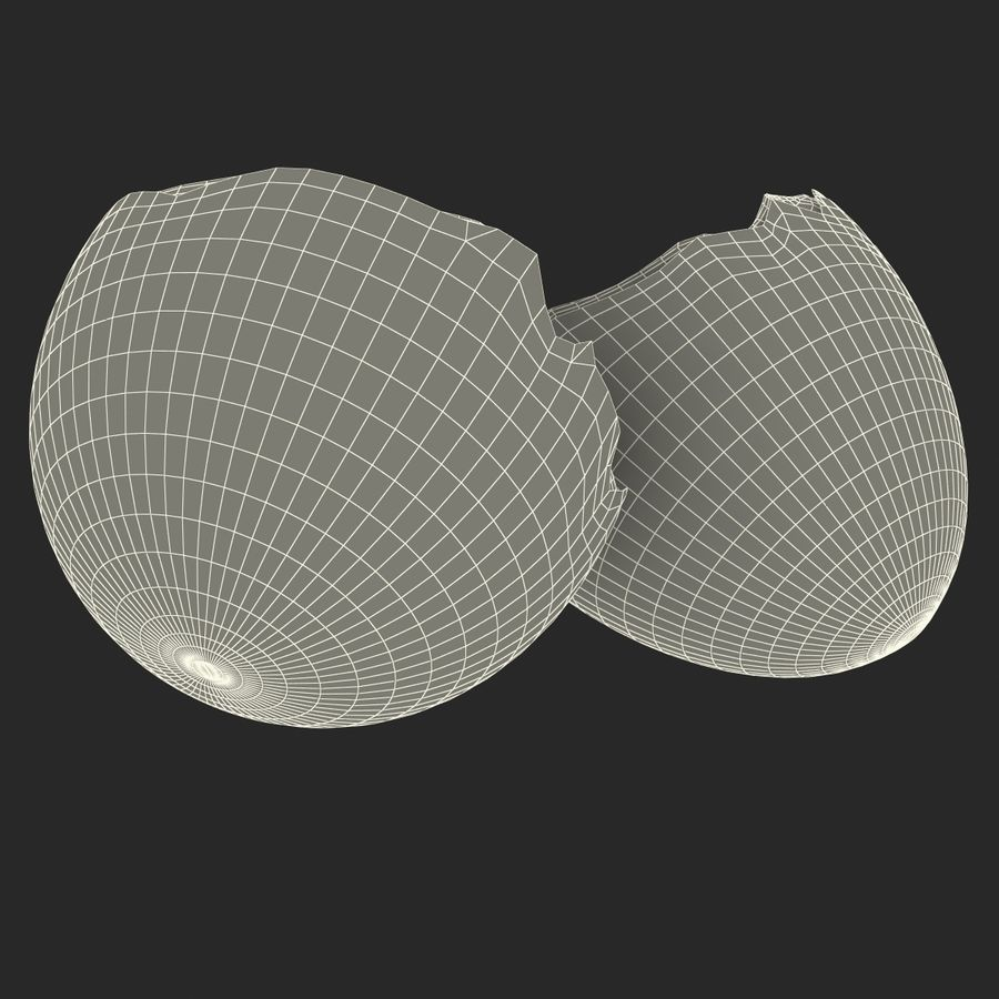 Coquille d'oeuf royalty-free 3d model - Preview no. 18