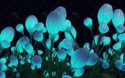 Blommor som i Avatar 3d model
